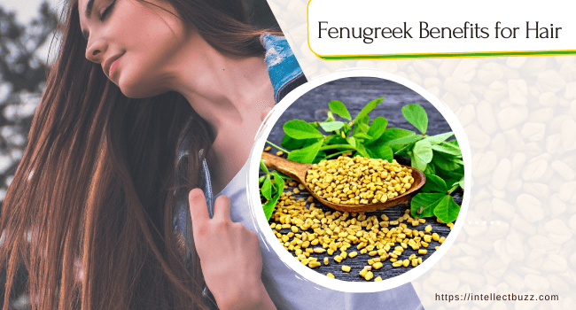 Fenugreek For Hair: Know the Uses and Benefits of Fenugreek Seed
